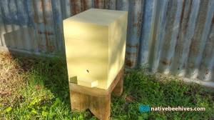 nativebeehive_110715