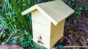 nativebeehive_roof050715