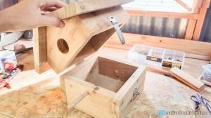 nbh birdhouse2
