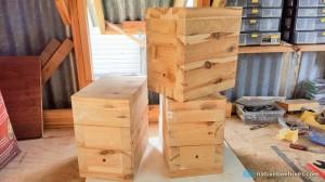 nbh cypressboxes 170716